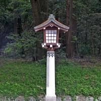 Lanternes de pierre au sanctuaire Meiji-jingū