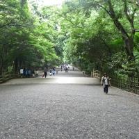 Grande allée d'entrée au Meiji-jingū