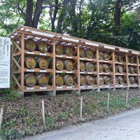 Offrandes de vin de Bourgogne au Meiji-jingū