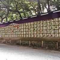 Offrandes de saké à l'entrée du Meiji-jingū