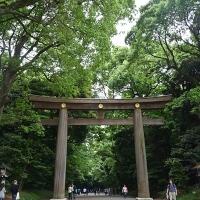 Premier torii à l'entrée de Meiji-jingū
