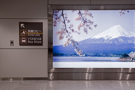 Vue d'accueil au Japon !
