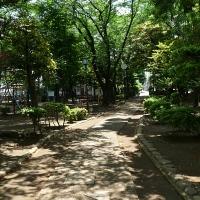 Le parc de la colline de Dokanyama