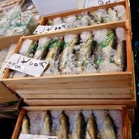 Étals au marché de Tsukiji