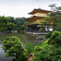 Le temple Kinkaku-ji à Kyoto