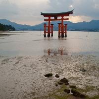 Ô torii sur l'île de Miyajima