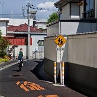 Aux alentours de la ligne Arakawa