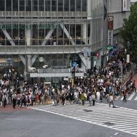 Piétons qui attendent au carrefour de Shibuya