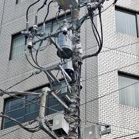 Tissage de fils électriques sur les pylônes